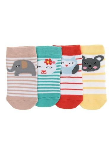 Locopop - Çorap